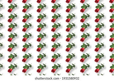 trendy red rose wallpaper pattern with drop shadow on a white background