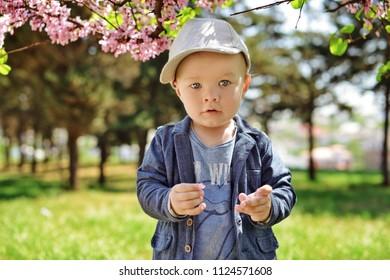 trendy toddler boy standing  in blossin garden