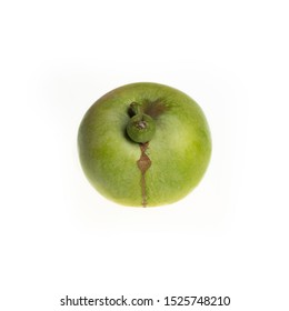 Trendy ugly food concept. Green apple isolated on white background. Fruit with a strange shape. The problem of food waste.