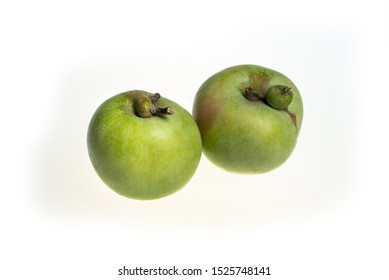 Trendy ugly food concept. Two green apples isolated on white background. Fruit with a strange shape. The problem of food waste.