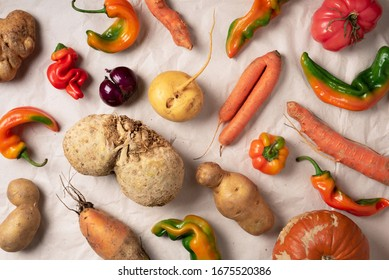Trendy ugly organic vegetables. Assortment of fresh eggplant, onion, carrot, zucchini on green background. Top view. Cooking ugly food concept. Non gmo vegetables