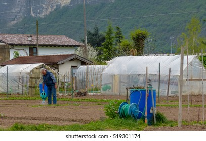 Trento, April 2014: Retirees who prepare the kitchen garden in spring. social and community gardens on the outskirts of the city of Trento, Italy