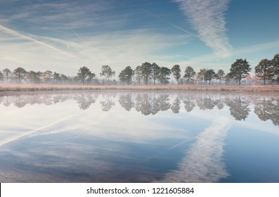 tres and blue sky reflected in lake