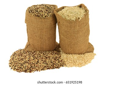 Tri color (Tri-Color, Tricolor) Organic Quinoa seeds (White, Black, Red Quinoa seeds) and Organic Quinoa Processed to Flakes in burlap bags and spilled on piles over white background - isolated