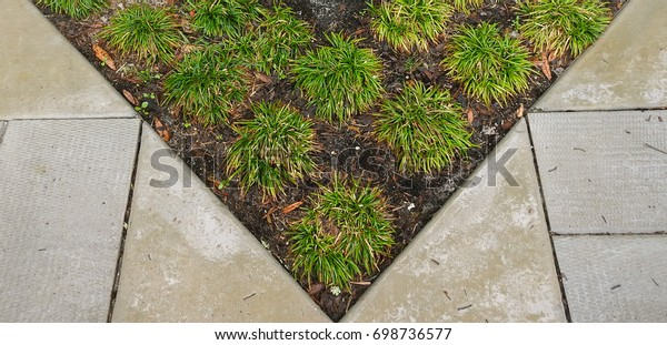 Triangle Landscaping Stock Photo Edit Now 698736577