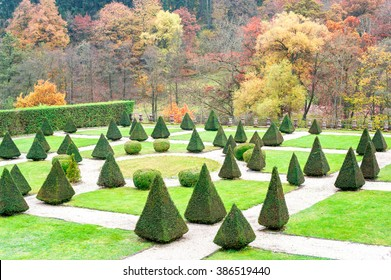 Triangle shaped topiary green trees in old ornamental garden of Burresheim Castle in autumn, Germany. Outdoors horizontal image