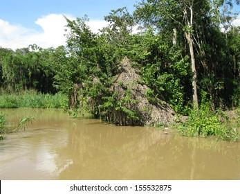 Tributary of the Amazon River, Amazonas Brazil