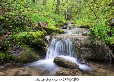 Tributary stream of the Leitzach river with small waterfall and fresh green leaves, Bavaria, Germany