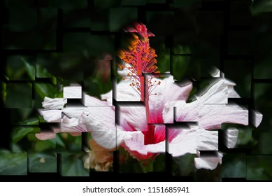 tribute to Picasso, cubist photograph of the flower hibisco, tropical flower,spring, background, flowers, flower,nature, floral, garden,series of photographs with cubist effects,artistic photo