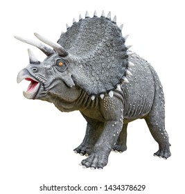 Triceratops is a genus of herbivorous ceratopsid dinosaur that lived late Maastrichtian stage of the late Cretaceous period, Triceratops isolated on white background with clipping path