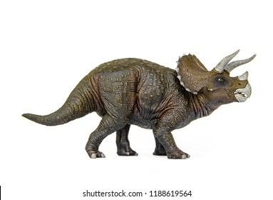 Triceratops Living dinosaurs In Late Cretaceous. Dinosaur herbivores have him 3 on his head. isolated on white background.