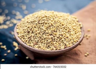 Trigonella foenum-graecum,methi,fenugreek seeds in a clay bowl.