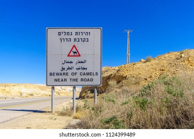Trilingual warning sign, beware of camels near the road, in the Negev desert, southern Israel