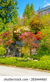 Trimmed bushes, flowers and stones in nicely decorated front yard, lawn of the house. Landscape design. Vertical.