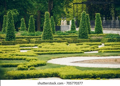 Trimmed trees and plants on slope of green grass