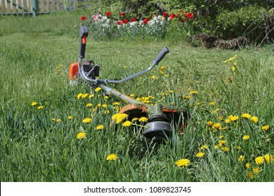 The trimmer for grass cutting lies on the bright green grass and yellow dandelions in the garden.