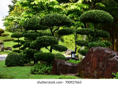 trimming plants in Japanese Gardens