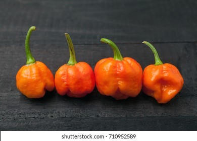 Trinidad Moruga Scorpion Spicy chili in the world on a black background