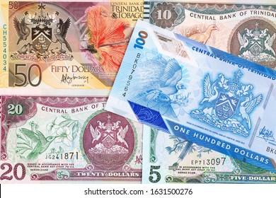 Trinidad and Tobago dollar a business background