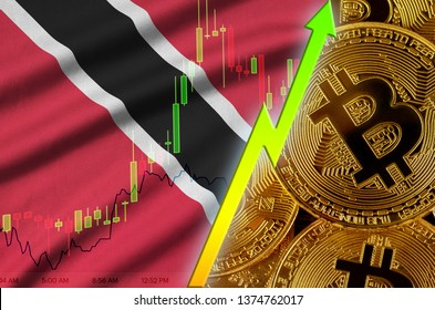 Trinidad and Tobago flag and cryptocurrency growing trend with many golden bitcoins