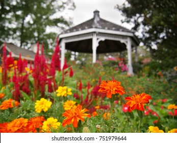 A trio of brilliant orange Marigold flowers stand perkily in the midst of a colorful flower garden with a whimsical gazebo in the background.