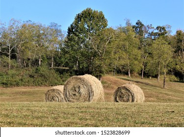 A trio of hay bales in a brownish field on an abandoned farm.