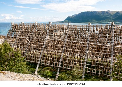 Trip to Nordkapp, fish drying on wooden crates