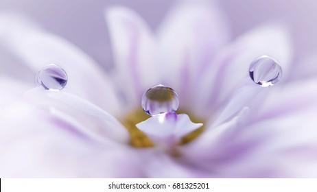 Triple Droplets
