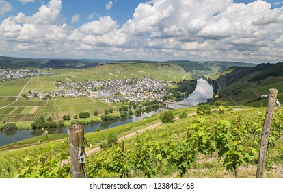 Trittenheim on the Moselle Rhineland-Palatinate Germany.