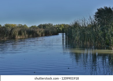 Trnava Pond protected park