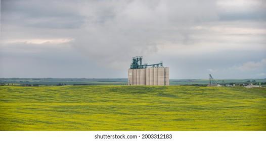 Trochu, Alberta - July 4, 2021: Largeg Vitera cement grain terminal outside Trochu, Alberta.