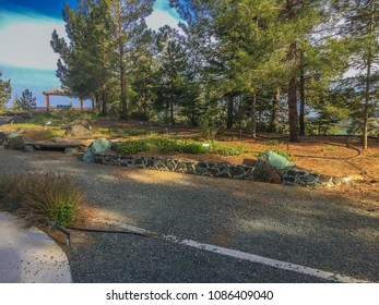 The Troodos National forest Park located in rhe Troodos mountain in the Limassol district, Cyprus. Ourdoor nature photography in Cyprus island