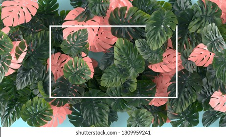 Tropica pink and green leaves Monstera on blue background. Template layout, minimal fashion summer concept art . Flat lay, top view.
