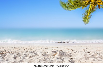 Tropical background with coconut palm trees, sandy beach, ocean and perfect sky.