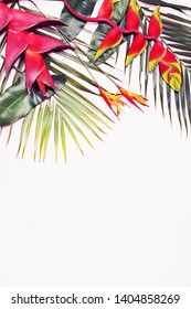 Tropical background with exotic red flowers with leaves/top view/copy space