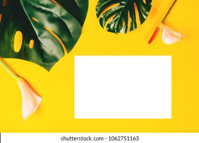 Tropical background with monstera, anthurium, calla on yellow background with clean blank for text.