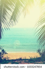 tropical background with sea beach and palm trees in the vintage style