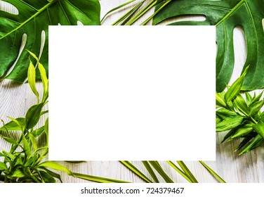 tropical background with space for text
