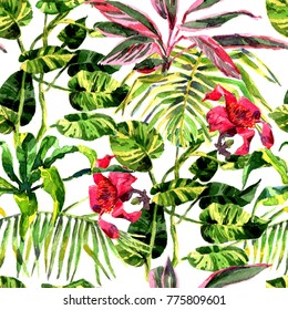 Tropical Background. watercolor tropical leaves and plants. Hand painted jungle greenery background