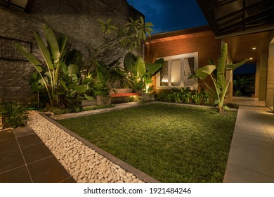 tropical Backyard Garden Illumination. Illuminated Garden at Night with Various of Plants