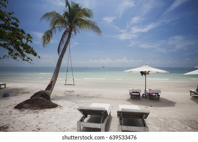Tropical beach background with palm trees white sand and blue sky
