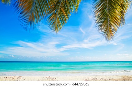 Tropical beach background, white sand, azure water and palm tree branches over blue sky.  Caribbean Sea coast, Dominican republic, Saona island resort
