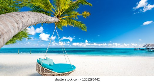 Tropical beach banner as summer landscape with beach swing or hammock and white sand and calm sea for beach background. Perfect beach scene vacation and summer holiday concept. Boost up color process
