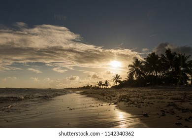 Tropical beach with a  Beautiful sunset over the sea with a view at palms trees in Praia do forte, Bahia, Brazil