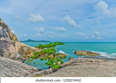 tropical beach and blue sky background, Hinta Hinyai Koh samui Thailand