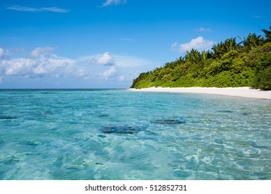 Tropical beach with blue water and palm trees, Thinadhoo island, Vaavu Atoll, Maldives
