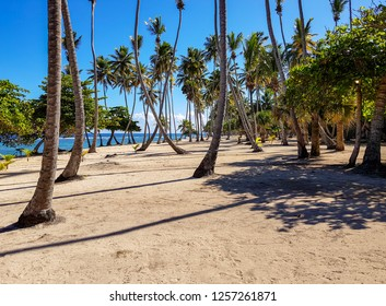 Tropical Beach in Cabrera