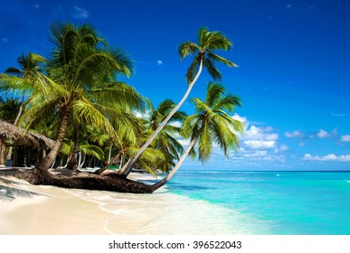 Tropical beach in caribbean sea, Saona island, Dominican Republic