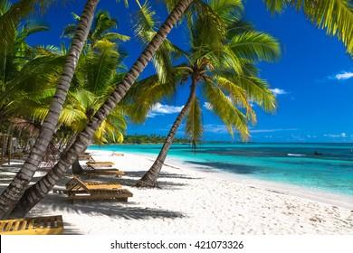 Tropical beach in caribbean sea, Saona island, Dominican Republic.
