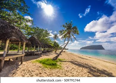Tropical beach with a coconut palm trees and a beach fales, Samoa Islands
